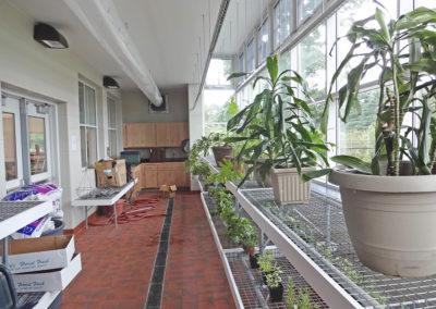 11 Greenhouse